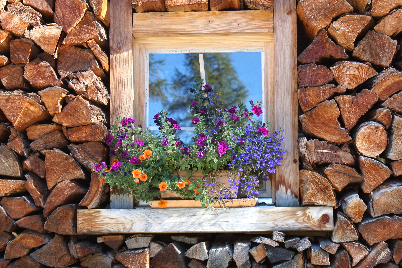 ramy okienne i okna drewniane ?